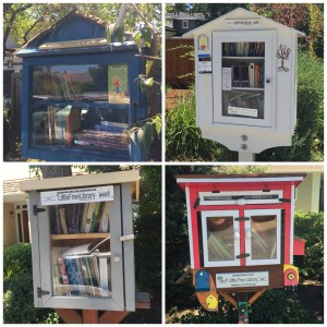 "Little Free Library ""book tour"" for Super Lexi!"